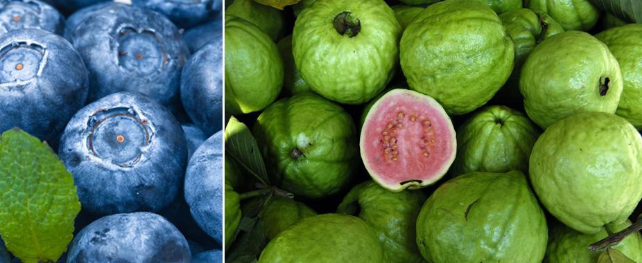 Fruit5